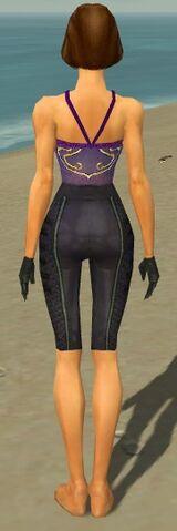 File:Mesmer Elite Rogue Armor F gray arms legs back.jpg