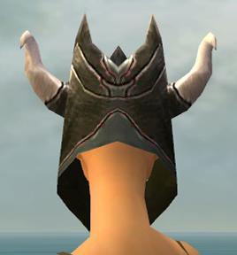 File:Warrior Norn Armor F gray head back.jpg