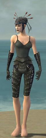 File:Necromancer Ascalon Armor F gray arms legs front.jpg