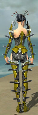 Necromancer Profane Armor F dyed back