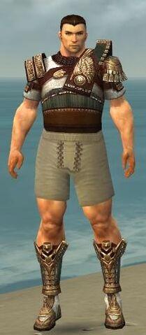 File:Warrior Vabbian Armor M gray chest feet front.jpg
