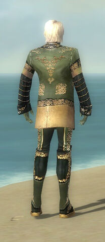 File:Mesmer Elite Canthan Armor M gray back.jpg