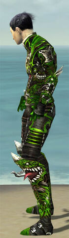 File:Necromancer Canthan Armor M dyed side.jpg