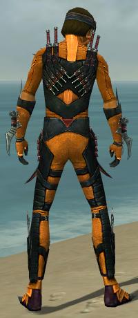 File:Assassin Elite Canthan Armor M dyed back.jpg