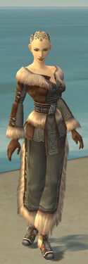 Monk Norn Armor F gray front