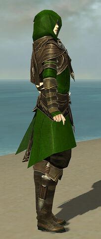 File:Shining Blade Uniform F default side.jpg