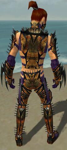 File:Assassin Elite Exotic Armor M dyed back.jpg