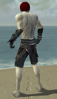 Necromancer Asuran Armor M gray arms legs back