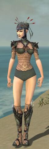 File:Necromancer Elite Cabal Armor F gray chest feet front.jpg