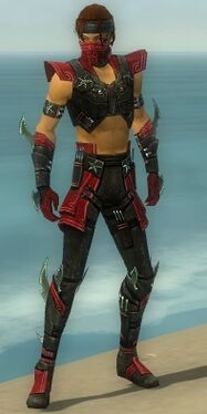 Assassin Luxon Armor M dyed front