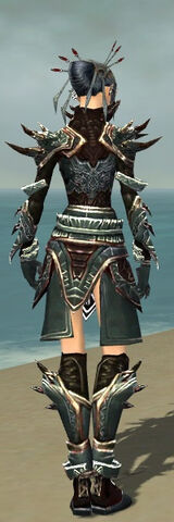 File:Necromancer Asuran Armor F gray back.jpg