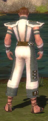 File:Monk Elite Saintly Armor M gray back.jpg
