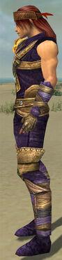 Ranger Tyrian Armor M dyed side alternate