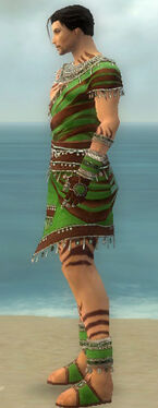 Ritualist Exotic Armor M dyed side
