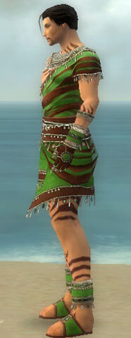File:Ritualist Exotic Armor M dyed side.jpg