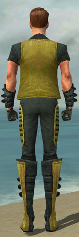 File:Mesmer Rogue Armor M dyed back.jpg