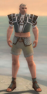 Monk Elite Judge Armor M gray chest feet front