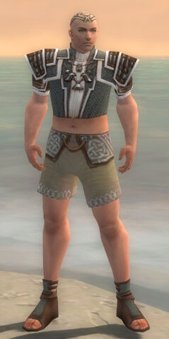 File:Monk Elite Judge Armor M gray chest feet front.jpg