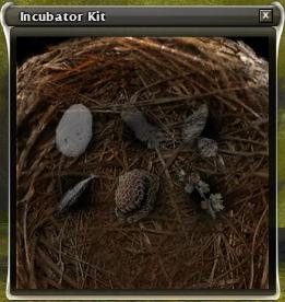 File:Empty incubator.jpg
