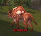 Afflicted Bull