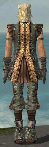 File:Elementalist Istani Armor M gray back.jpg