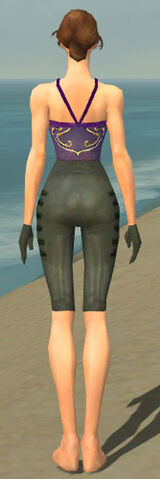 File:Mesmer Rogue Armor F gray arms legs back.jpg