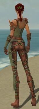 Ranger Ascalon Armor F gray back