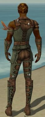 Ranger Ascalon Armor M gray back