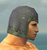 File:Warrior Tyrian Armor M gray head side.jpg