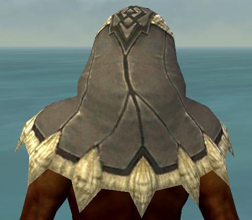 File:Dervish Norn Armor M gray head back.jpg
