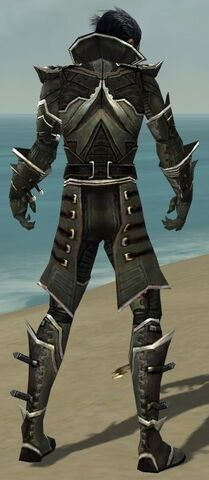 File:Necromancer Elite Kurzick Armor M gray back.jpg