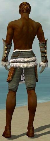 File:Ranger Canthan Armor M gray arms legs back.jpg