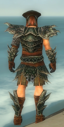 File:Warrior Luxon Armor M gray back.jpg