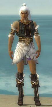 Elementalist Elite Sunspear Armor M gray chest feet front