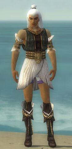 File:Elementalist Elite Sunspear Armor M gray chest feet front.jpg