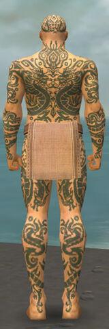 File:Monk Dragon Armor M gray back.jpg
