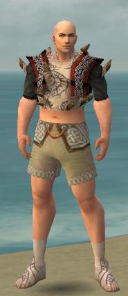 File:Monk Primeval Armor M gray chest feet front.jpg