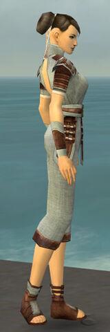 File:Monk Censor Armor F gray side.jpg