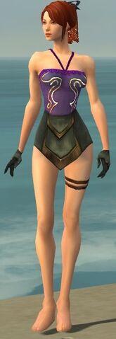 File:Mesmer Vabbian Armor F gray arms legs front.jpg
