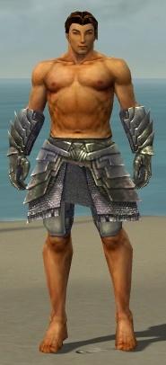 File:Warrior Templar Armor M gray arms legs front.jpg