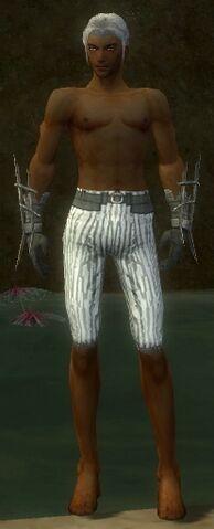 File:Elementalist Primeval Armor M gray arms legs front.jpg