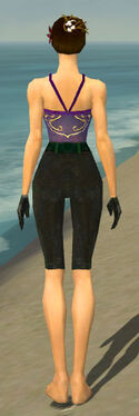 Mesmer Tyrian Armor F gray arms legs back