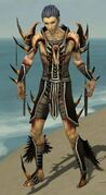 Necromancer Ancient Armor M gray front