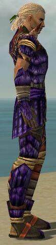 File:Ranger Elite Drakescale Armor M dyed side alternate.jpg