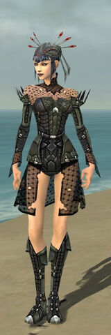 File:Necromancer Cabal Armor F gray front.jpg
