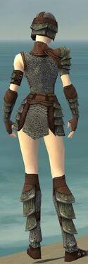 Warrior Krytan Armor F gray back