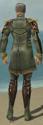 File:Mesmer Vabbian Armor M gray chest feet back.jpg
