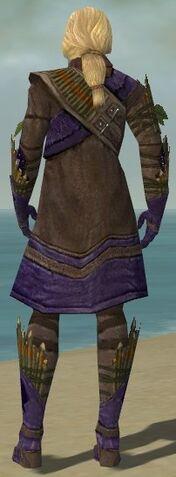 File:Ranger Elite Druid Armor M dyed back.jpg
