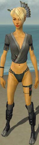 File:Assassin Shing Jea Armor F gray chest feet front.jpg