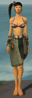 Ritualist Canthan Armor F gray arms legs front
